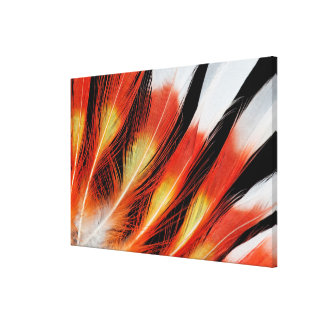 Cockatoo Feather Pattern Canvas Print