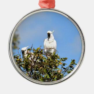 COCKATOO IN TREE RURAL QUEENSLAND AUSTRALIA Silver-Colored ROUND DECORATION
