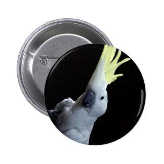 Cockatoo Parrot 6 Cm Round Badge
