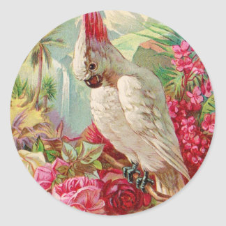 Cockatoo & Roses Vintage Art Classic Round Sticker