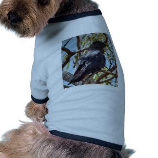 COCKATOO RURAL QUEENSLAND AUSTRALIA RINGER DOG SHIRT