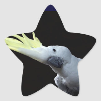 Cockatoo Star Sticker