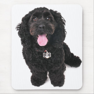 cocker poodle mix puppy  looking up mouse pad