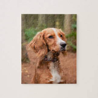 """Cocker Spaniel 8"""" x 10"""" Photo Puzzle with Gift Box"""