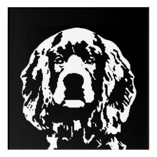 Cocker Spaniel Black & White Acrylic Wall Art