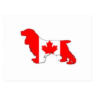 Cocker Spaniel Canada Postcard