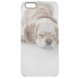 Cocker spaniel dog sleeping clear iPhone 6 plus case