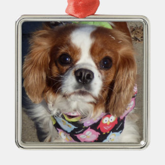 Cocker Spaniel Pup Ornament