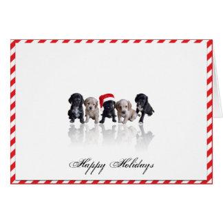 Cocker Spaniel Puppies in Santa Hat Christmas Card