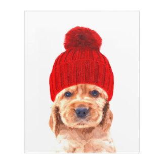 Cocker spaniel puppy with hat portrait acrylic print