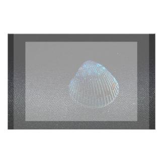 cockle shell back dark seashell beach image stationery design