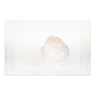 cockle shell back light seashell stationery