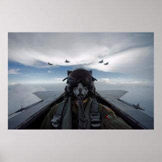Cockpit Selfie Poster