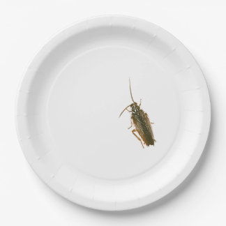 Cockroach prank plate 9 inch paper plate