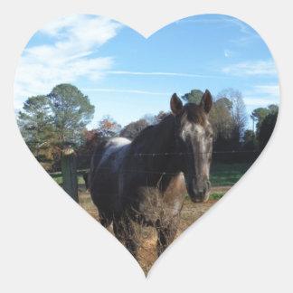 Coco and Cream brown horse Stickers