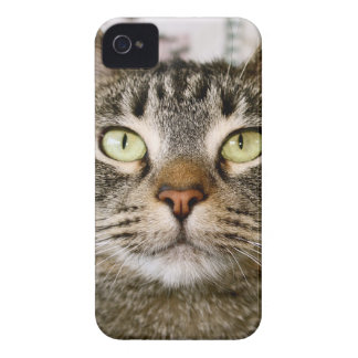 Coco-Mate Iphone Case