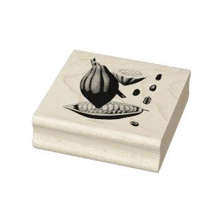 Cocoa bean vintage illustration rubber stamp