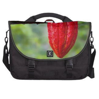 cocoa pod red laptop bags
