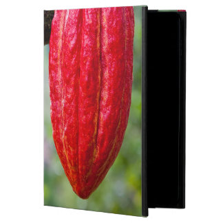 cocoa pod red powis iPad air 2 case