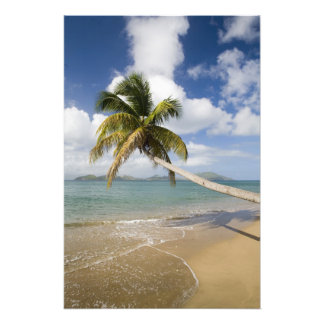 Coconut Grove Beach at Cades Bay, with St. Art Photo