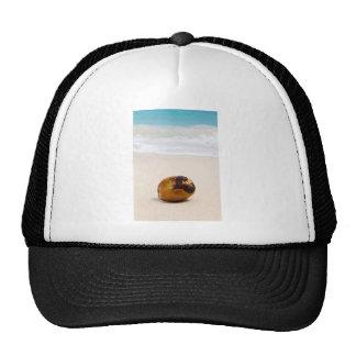 Coconut on a tropical beach cap