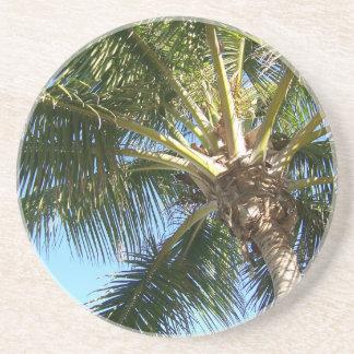 Coconut Palm Tree Coaster