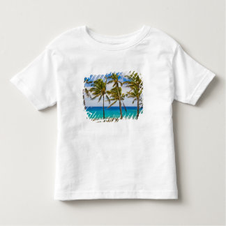 Coconut palm trees (Cocos nucifera) swaying in Tee Shirts