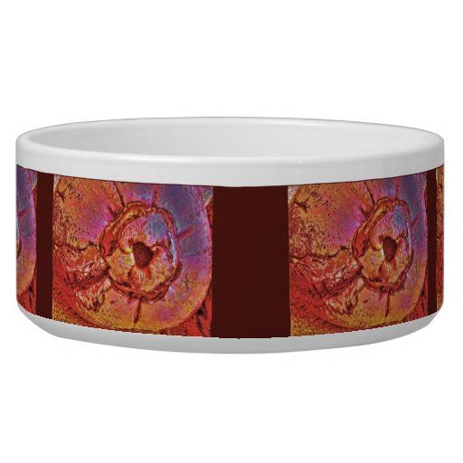 Coconut Pet Food Bowls