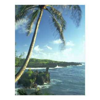 Coconut Tree Alone Among Smaller Plants 21.5 Cm X 28 Cm Flyer