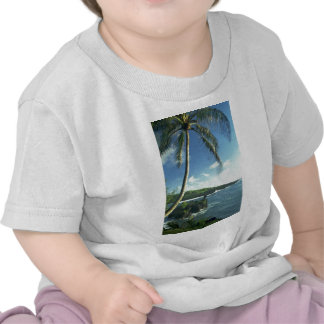Coconut Tree Alone Among Smaller Plants T-shirt