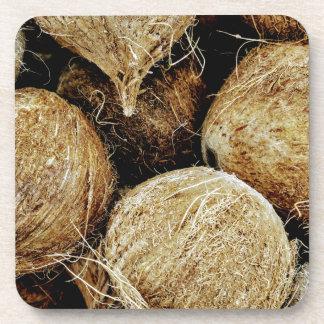 Coconuts Coaster