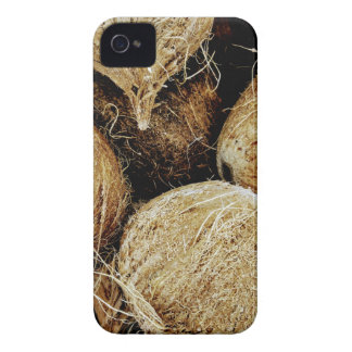 Coconuts iPhone 4 Cover