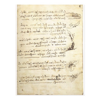 Codex on the flight of birds by Leonardo da Vinci Postcard