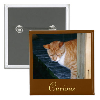 Cody the Cat Curious Button