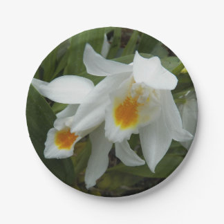 Coelogyne Orchids Floral Paper Plate