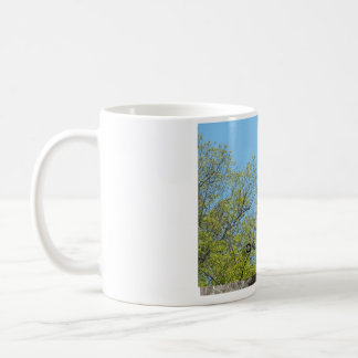 Coffe Mug Cup Bald Eagle One in a Million