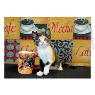 Coffe, Tea, or Meow - Leilani Card