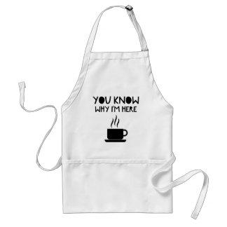 Coffee AA Anonymous Drunk Fellowship Standard Apron