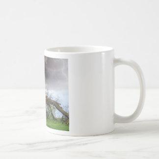 -- COFFEE MUG