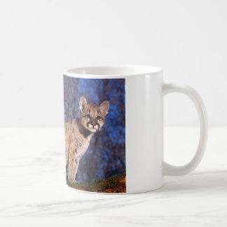 Coffee Mug-Cougar Cub Coffee Mug
