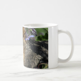 coffee mug with squirrel