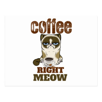 Coffee Right Meow Postcard