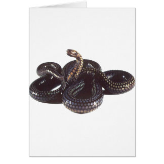 Coiled and Ready to Strike Snake Greeting Card