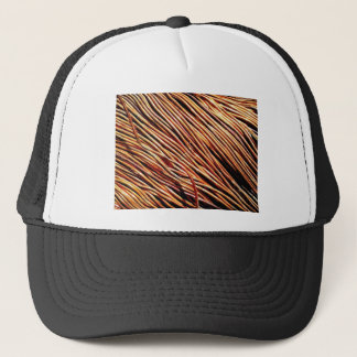 coils of the electric motor trucker hat