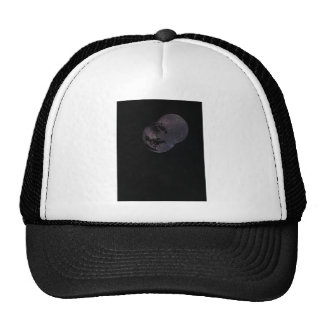 Coins and Constellations Cap