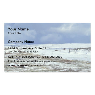 Cold Bay WW II Remains Business Card Templates