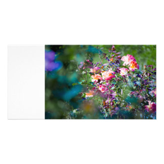 Cold Flowers Photo Greeting Card