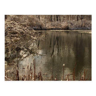 Cold Pond with Snow Post Card