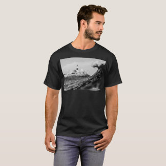 Cold Swims T-Shirt