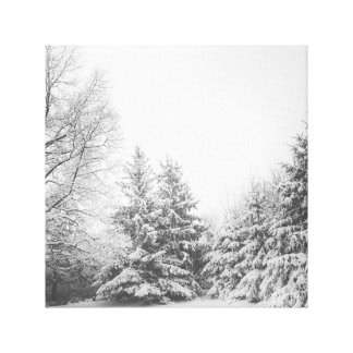 Cold Winter Stretched Canvas Print